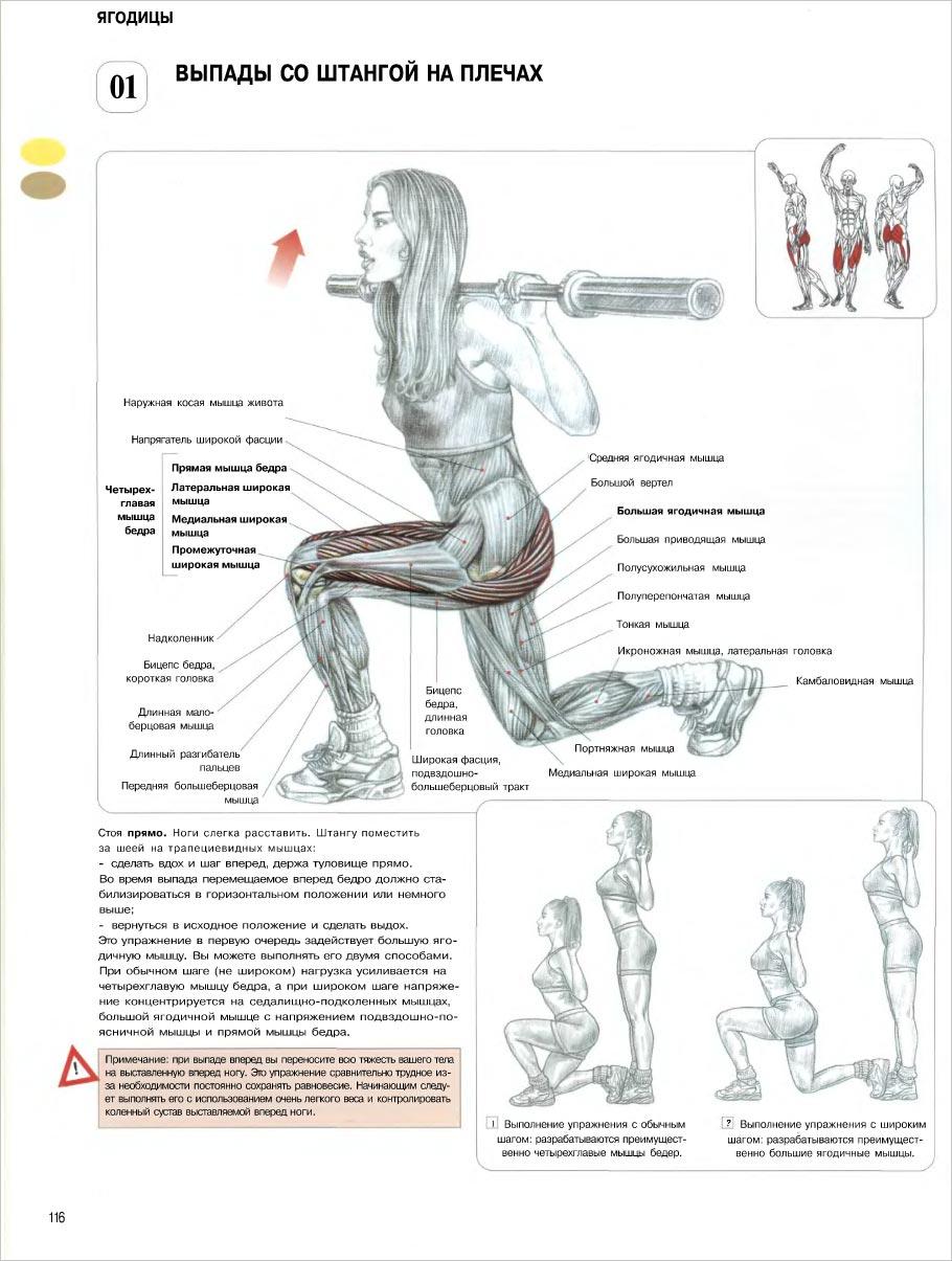 Техники и упражнения для увеличения пениса в домашних условиях